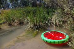 watermelon raft