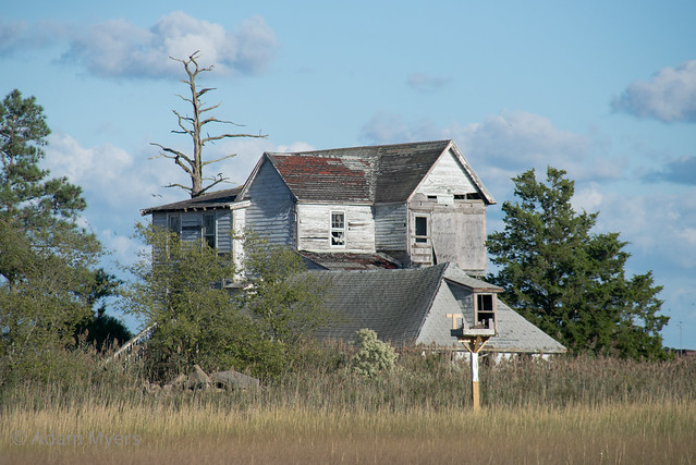 Abandoned Beach Houses, Oak, Nikon D600, AF Zoom-Nikkor 28-200mm f/3.5-5.6G IF-ED
