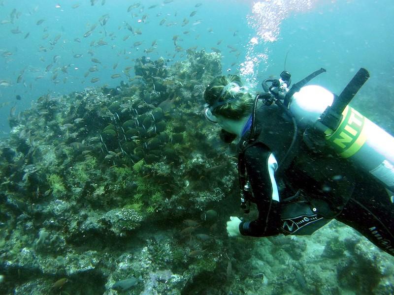 dive instructor bandos