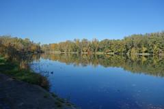 Herbst_33