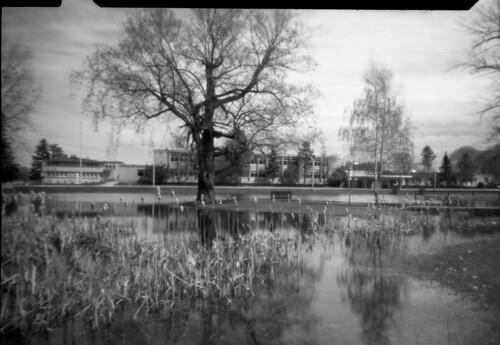 noonpinholecamera pinhole ilforddelta100 monochrome