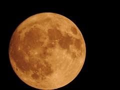 Moon 03-11-17