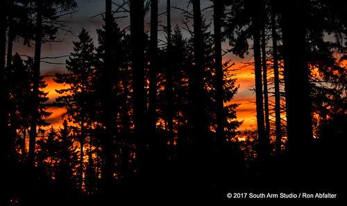 sunrise winlock washington pacificnorthwest