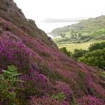 Dun Flodigary - Isle of Skye