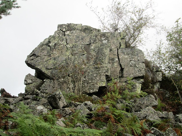 Hazel Tor (west) SX 7359 7176 Dartmoor