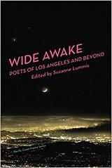 Cover of Wide Awake41qTMMkkxSL._SY344_BO1,204,203,200_