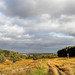 Bradgate Country Park 22nd October 2017