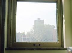 Through Glass (1)