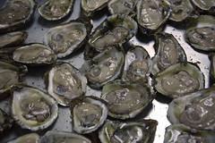 Leipsic Oyster Festival