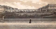 Brighton - Sussex Square