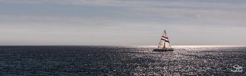 california ocean pacificocean santacruz water sailboat sailingboat
