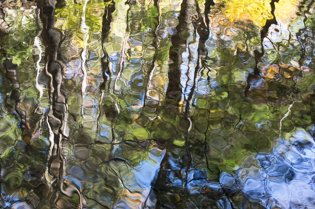 Fall colors reflected in Sage's Ravine
