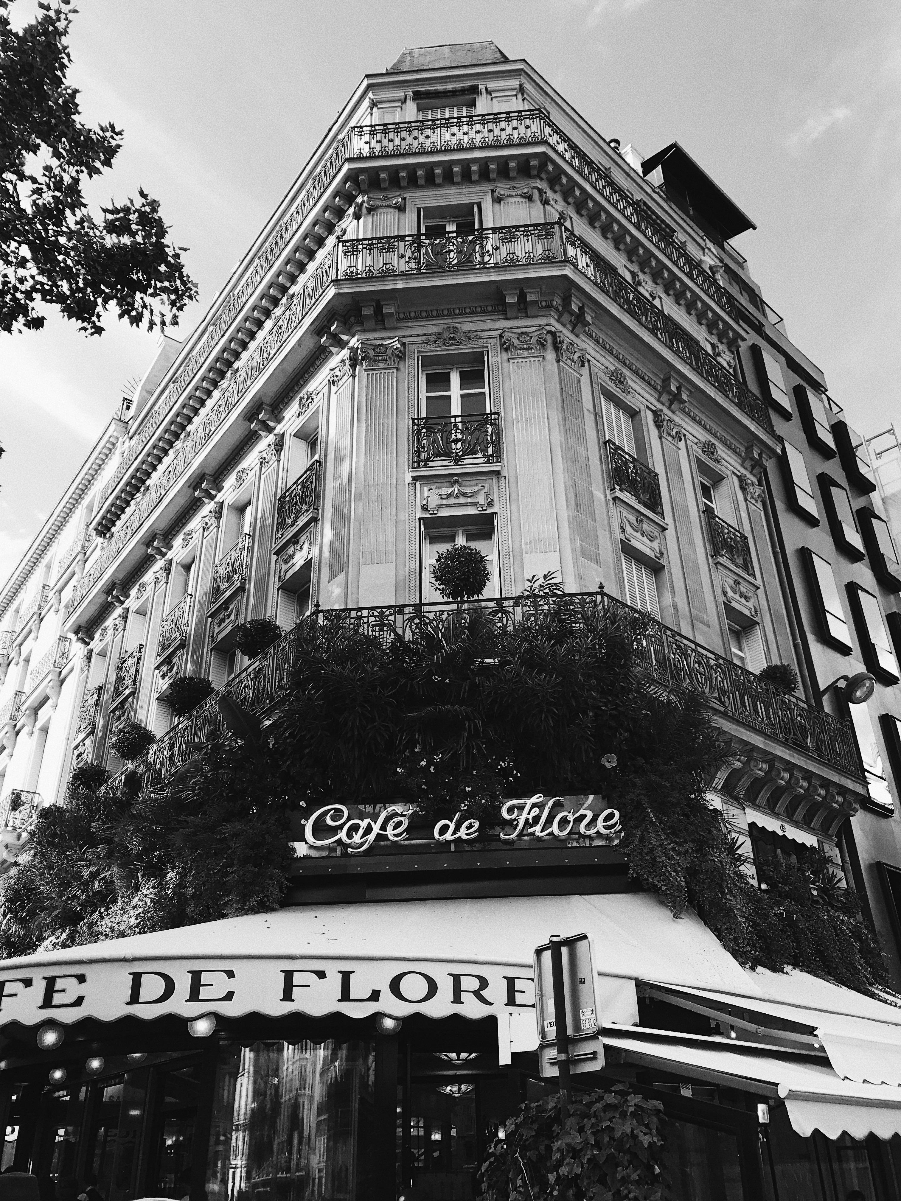 Cafe De Flore Andiataandiata - Fotos-de-flore