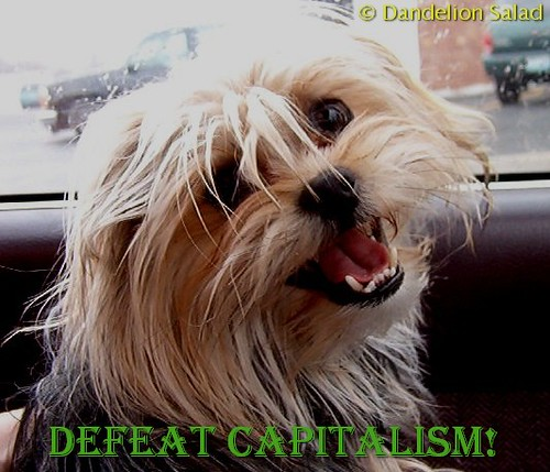 Dan E. Says Defeat Capitalism