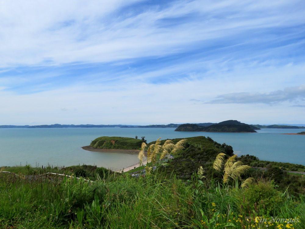 New Zealand Auckland Waitawa