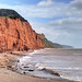 The Devon coast near Sidmouth
