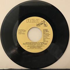 DR. BUZZARD'S ORIGINAL SAVANNAH BAND:CHERCHEZ LA FEMME(RECORD SIDE-B)