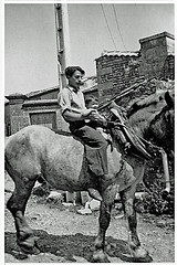 Vintage B&W. 1938. France. Charente. Riding my father's horse. - Photo of Tourriers