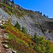 Small photo of Another talus field