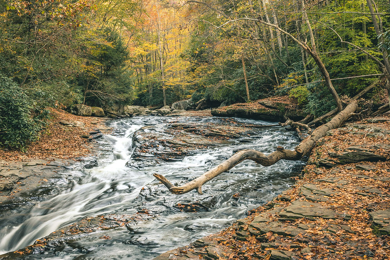 Ohiopyle fall 2017 (3 of 5)