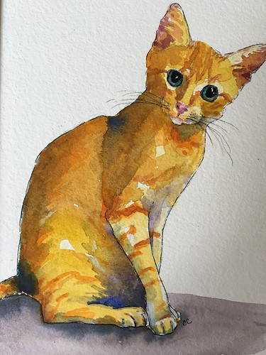 watercolor kitty