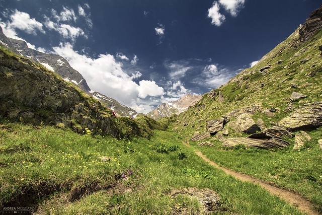 Bettelmatt Trail - Alta Val Formazza (Italy)