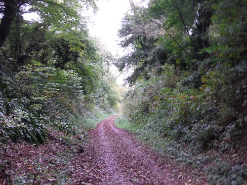 Meon Valley Trail (Dismantled Railway Line)