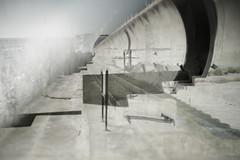 Promenade:Untitled259