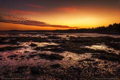 Acadia National Park Twilight