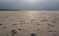 Vlieland & The North Coast