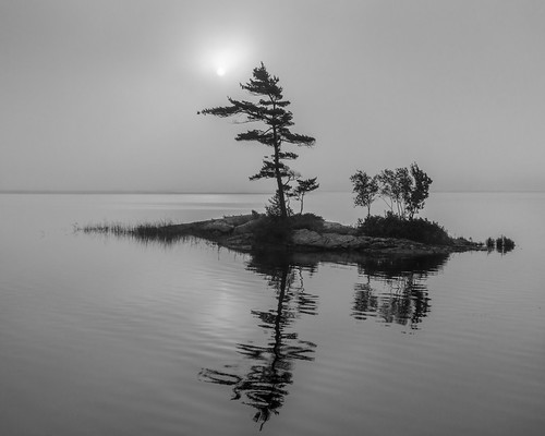 maine topsham fog bw monotone androscoggin river islet