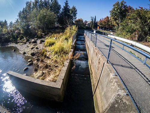 Whatcom Creek Falls and Maritime Park-009