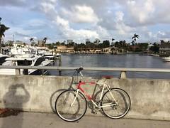 Ride around town with my Fuji Club Road bike converted to city bike.