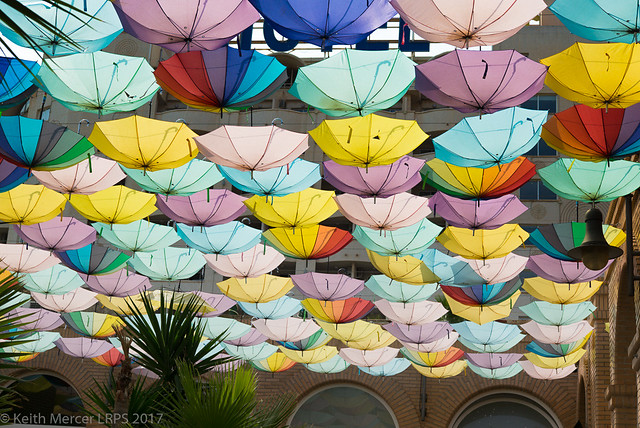Umbrella Display