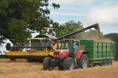 New Holland CX8070 Combine Harvester unloading Winter Barley to Broughan Engineering Mega HiSpeed Trailer drawn by a Massey Ferguson 6490 Tractor