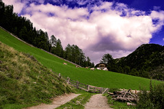 Valle Aurina - Pojen