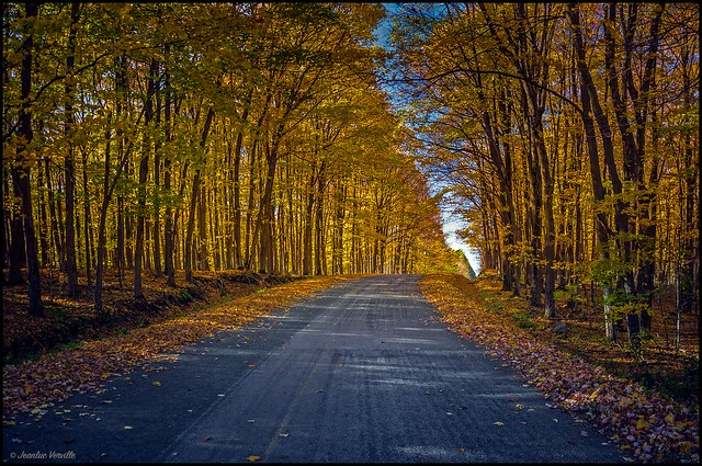 Chemin d'Automne / Autumn road
