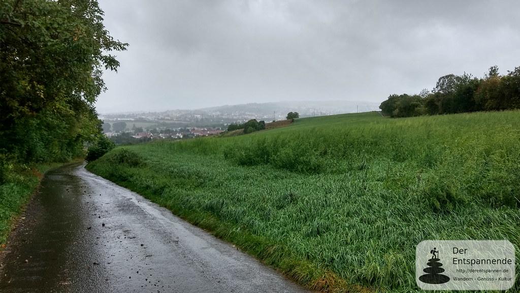 Zwischen Ilbesheim und Bischheim