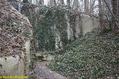 2017-02-26-10-50-51_Colline de Hausbergen.jpg