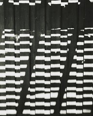 Abstract Photography Stripes Shadows Black White Wooden Wall 22VDF