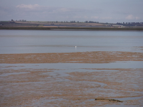 Mudflats, The Swale and Isle of Sheppey