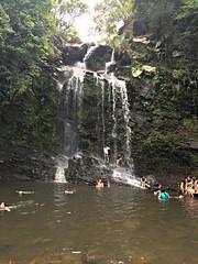 swimming at Bridespool