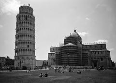 Pisa - Torre Pendente (Medium Format)