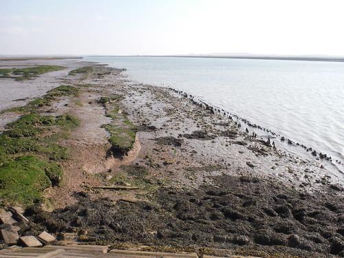 Remnants of medieval sea defences
