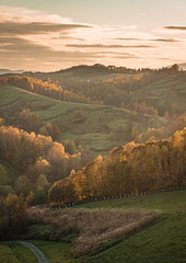 Autumn hill:羊と雲の丘