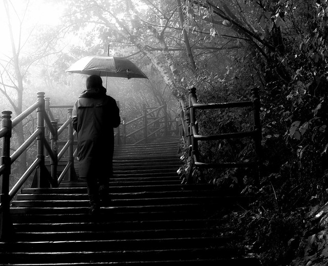 un jour de pluie au Belvédère