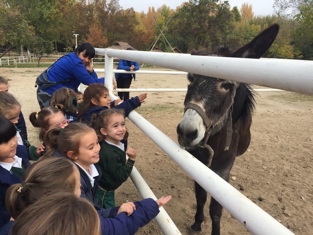 Visita de Infantil a una Granja Escuela