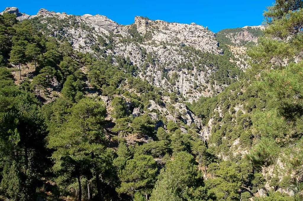 Los Torcales de Linares desde más abajo