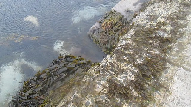 "Sea ""River"" Under Causeway at Birsay, Orkney"