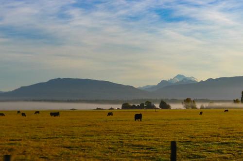 Skagit Valley Foggy Sunrise-003